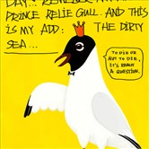 Prince Relie Gull